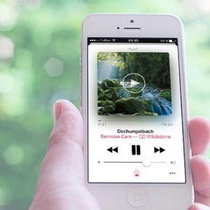Die weltbesten Klänge für Tinnitus-Retraining und Entspannung